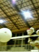 トリムバレーボール