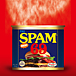THE SPAM69