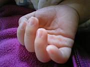 2009年12月14日生まれ