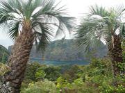 風景写真by携帯電話