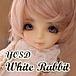 幼SD White Rabbit が好き