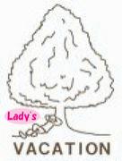 木バケ Lady's Limited Edition
