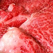 生肉食研究会(好き)