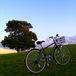 自転車散策と写真