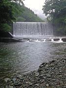 渓流釣り・湖釣り【神奈川周辺】