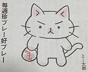 猫ピッチャーLove♪