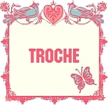 Nailtip Shop TROCHE