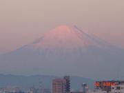 富士山・海・島をこよなく愛する