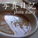 写真日記 photo diary
