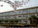 野栄中学校