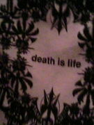 death is life.