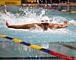 藤井 拓郎 (水泳選手)