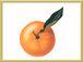 オレンジの会〜DARU☆GARIYA〜