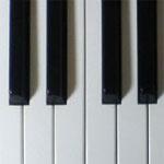 ピアノ技術者「Team Salt」