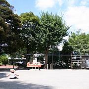 ママ視点の公園情報