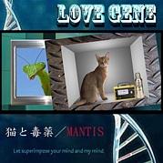【TALKING BOX with LOVE GENE】