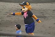 GAOKAの熱い野球!
