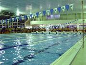 北里大学体育会水泳部