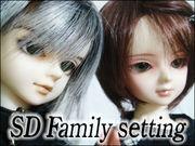 ** SD Family setting **