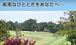 湘南でハーフゴルフを楽しもう