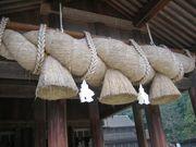 三つ編み限定米 品種鑑定会