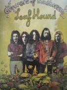 '70 hardrockバカ駄大学