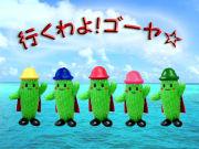 行くわよ!ゴーヤ★1984/05/08