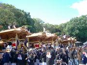 和泉信太・幸地区だんじり祭り