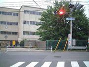 松戸市立柿の木台小学校