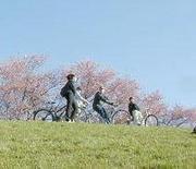 サイクリングしませんか?