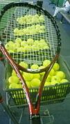ばーかぶとむしテニス部