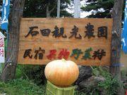 北軽井沢・石田観光農園