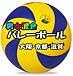 男女混合バレーボール大阪京都滋賀