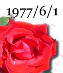 1977年6月1日生まれ☆