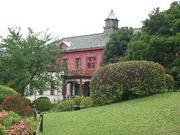今も昔も好きなのは小石川植物園