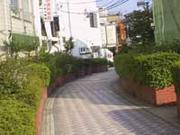 暗渠と緑道