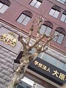 大原学園 函館校