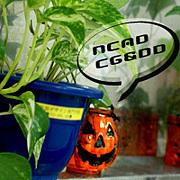 NCAD CG&DD