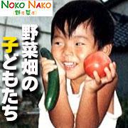 NOKO NAKO ● 野子菜子