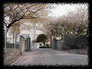 福岡市立平尾中学校