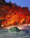 やっぱり 京都は、いいんです。