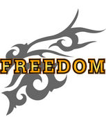 Freedom バスケチーム in 練馬
