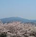大阪の最高峰 金剛山