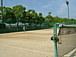 SAKURA.mosテニスの会