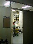 沖縄国際大学 考古学研究室と会