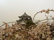 ちょっと日本のお城が好き♪