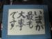 暁秀 3A 2003
