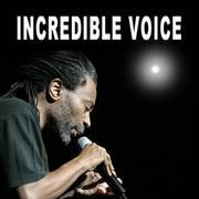 INCREDIBLE VOICE