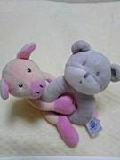 ☆2008年3月29日生まれ☆