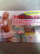 名古屋栄水着屋PEAK&PINE